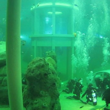 Holland Aqua water quality diving tower TODI
